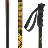 Scott Remit Ski Poles 2013