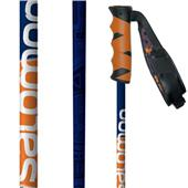 Salomon Hacker Ski Poles 2014