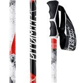Atomic Powder Ski Poles 2014