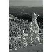 evo Mission Ridge Print