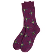 Richer Poorer Native Socks