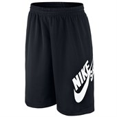 Nike SB Dri-Fit Mesh Logo Shorts - Big Boys'