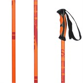 Faction Prodigy Ski Poles 2014