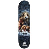 Element x The Mountain Bear Skateboard Deck