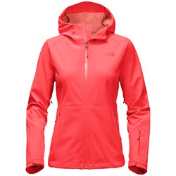 The North Face Apex Flex GORE-TEX Jacket - Women's - Used