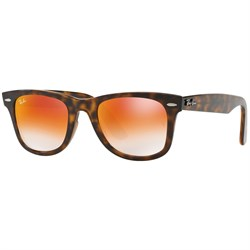 Ray Ban Wayfarer Ease Sunglasses