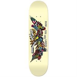 Anti Hero Daan We Fly 8.06 Skateboard Deck