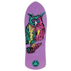 Welcome Owl on Crossbone 10.0 Skateboard Deck