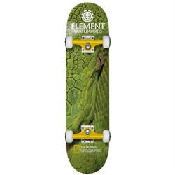 Element Nat Geo Snake 7.75 Skateboard Complete
