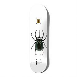 Girl Bannerot Beetles 8.5 Skateboard Deck
