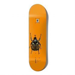 Girl Malto Beetles 8.25 Skateboard Deck