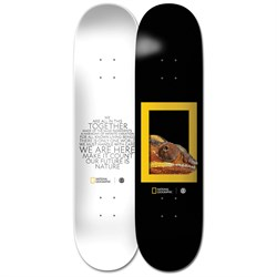 Element Nat Geo Dragon 8.2 Skateboard Deck
