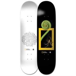 Element Nat Geo Spider 8.0 Skateboard Deck