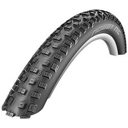 Schwalbe Nobby Nic Tire - 29