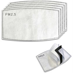 Coal PM 2.5 Carbon Filter Face Mask - 5-Pack