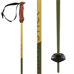 Völkl Phantastick 18mm Ski Poles 2022
