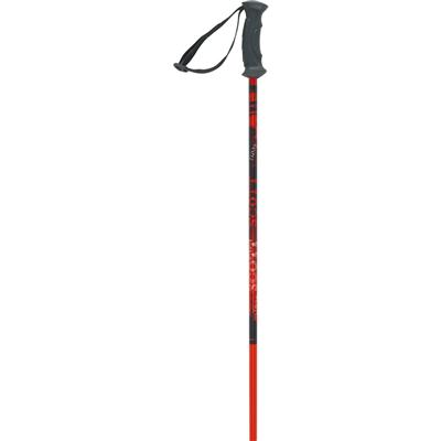 Scott Jr 540 Ski Poles - Kid's 2014