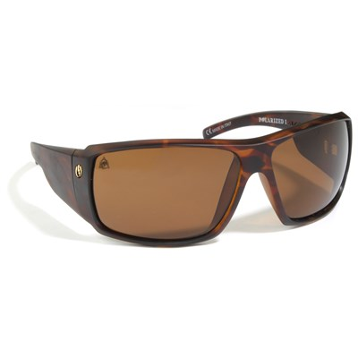 Electric D. Payne Polarized Sunglasses