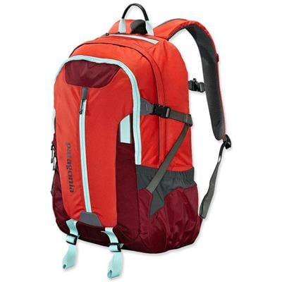 Patagonia Refugio 28L Backpack 2013