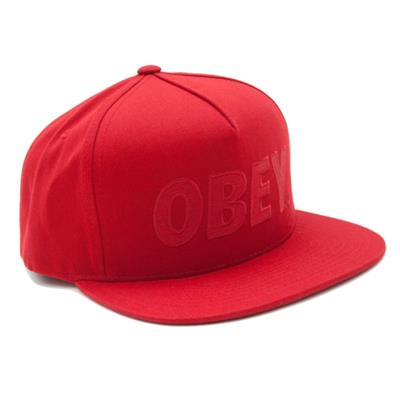 Obey Clothing The City Snapback Hat