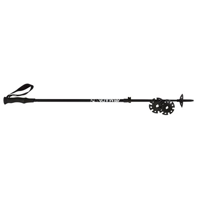 Armada AK Adjustable Ski Poles 2015