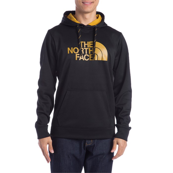 1cba005fb The North Face Surgent Half Dome Hoodie