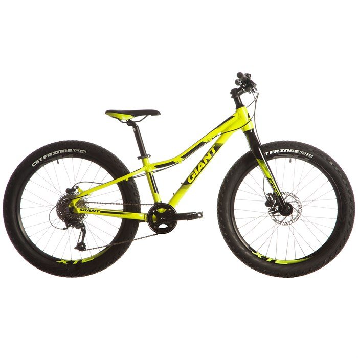 2fd783113b Giant XTC Jr 24+ Complete Mountain Bike - Big Kids  2018
