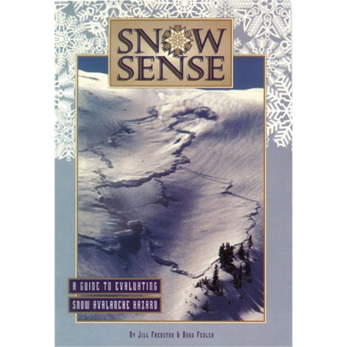 Life Link - Snow Sense Book