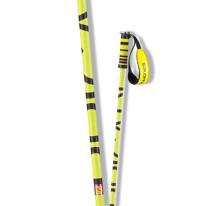Salomon - Brigade Ski Poles 2015