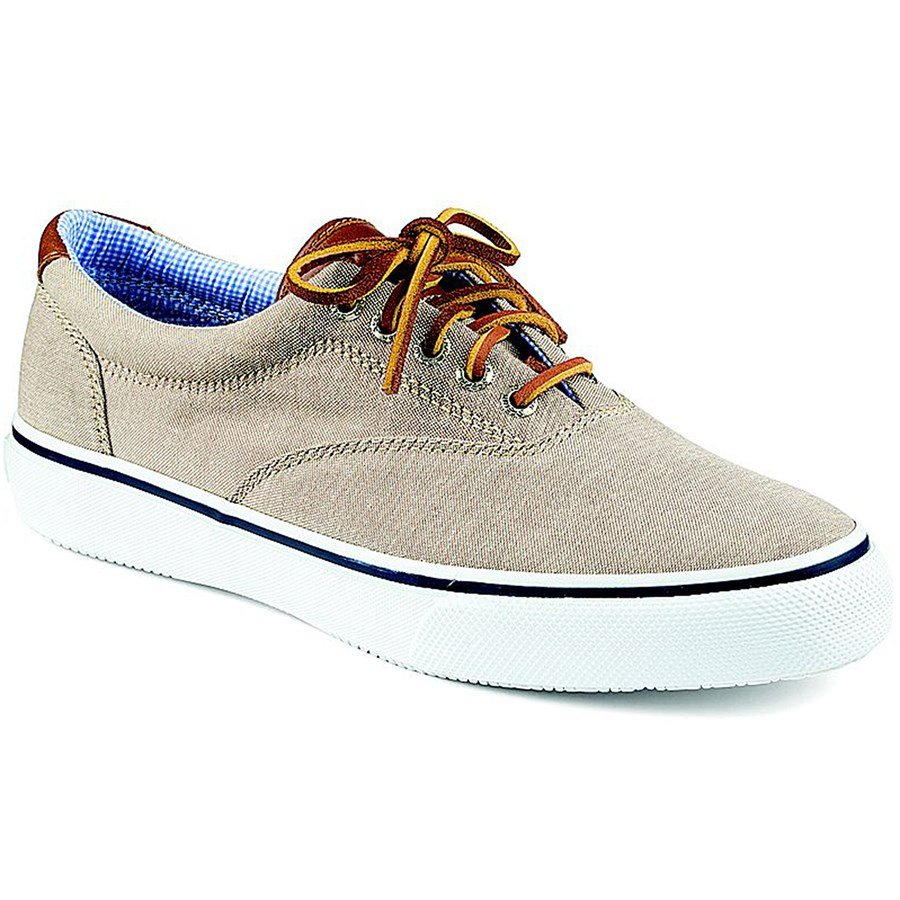 sperry top sider striper cvo shoes evo outlet