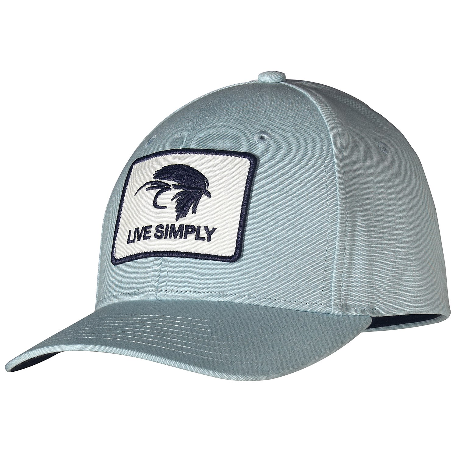 81cf736a0d Patagonia Live Simply Fly Roger That Hat