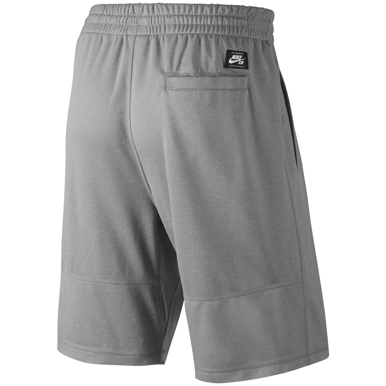 047c338fb852 Nike SB Dri-Fit Sunday Shorts