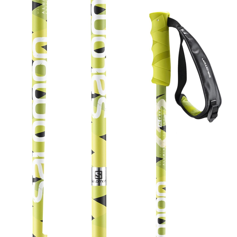 Salomon Hacker Ski Poles 2016  ff18215697c2